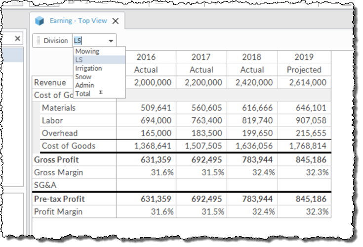 Landscaping Income Statement View 2